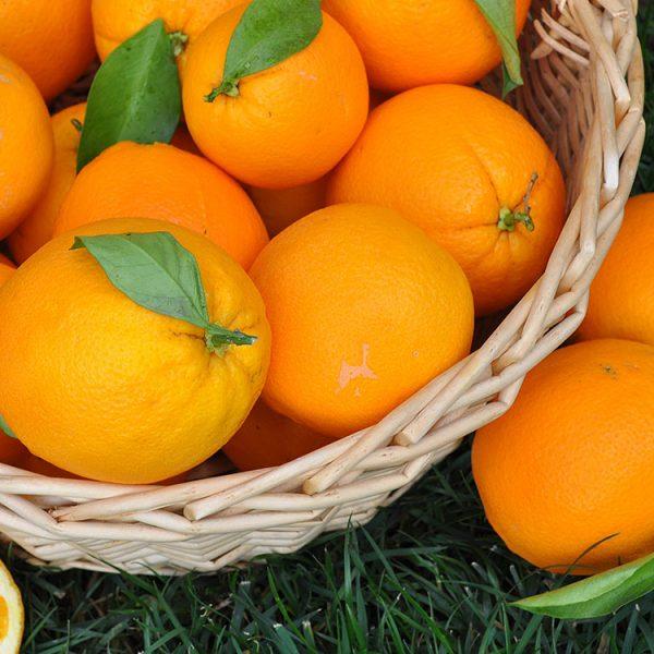 Pomarańczowa odsłona poezji na targowisku za nami